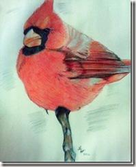 cardinalstudy[1]